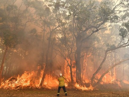 The Australian Prime Minister apologized for going on vacation amid a forest fire crisis