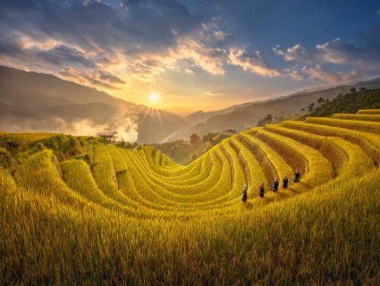 Mu Cang Chai Rice Terrace  was listed 7 special national Relics